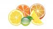 sušených citrusů