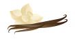 vanilky