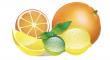 citrusů