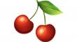 červených třešní