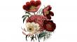 sušených květin