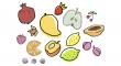 sušeného ovoce